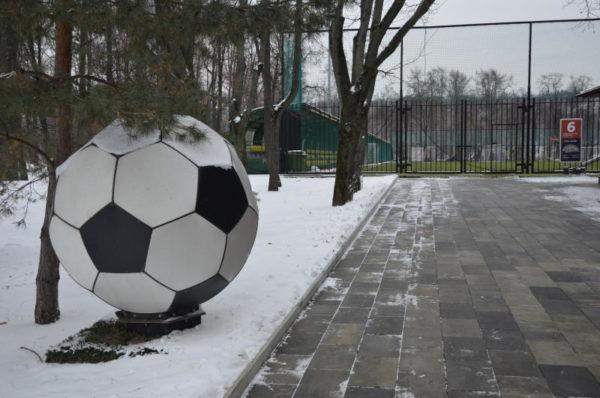 Футболисты из Воскресенского отправятся на «Зимний турнир города Московский». Фото: архив
