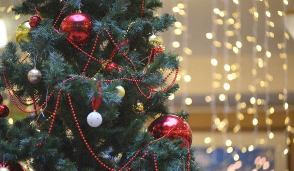 Новогоднюю ель установили в поселении. Фото: архив